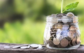 coins in a jar with a plant growing out of it